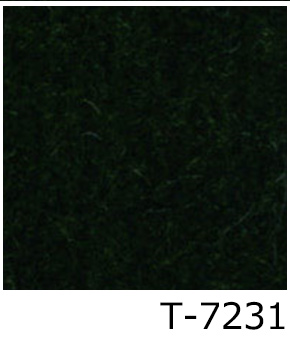 T-7231