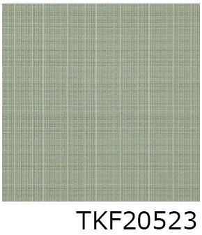 TKF20523
