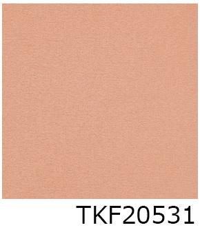 TKF20531