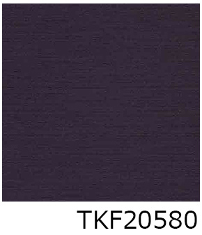 TKF20580