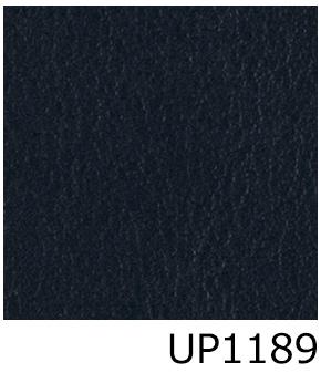 UP1189