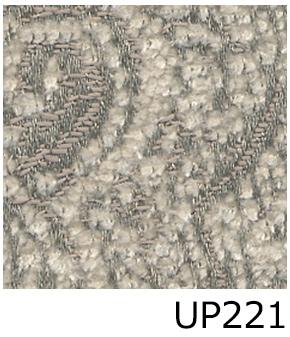 UP221