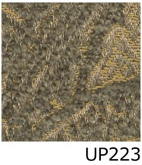 UP223