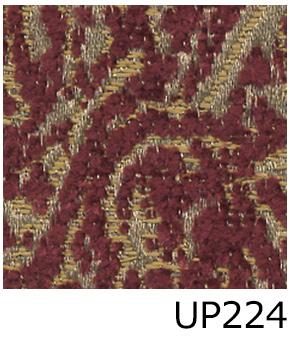UP224