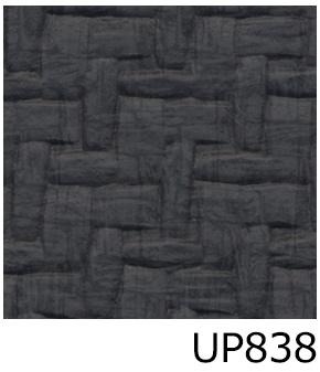 UP838