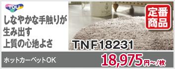 TNF9501