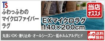 EXマイクロラグ140×200