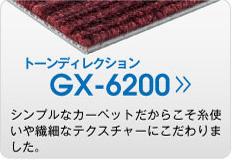 GX-6200 トーンディレクション