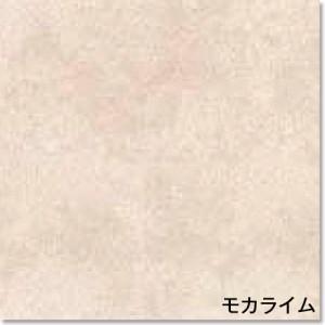 PST755