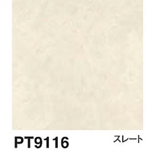 PT9116