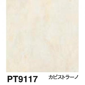 PT9117