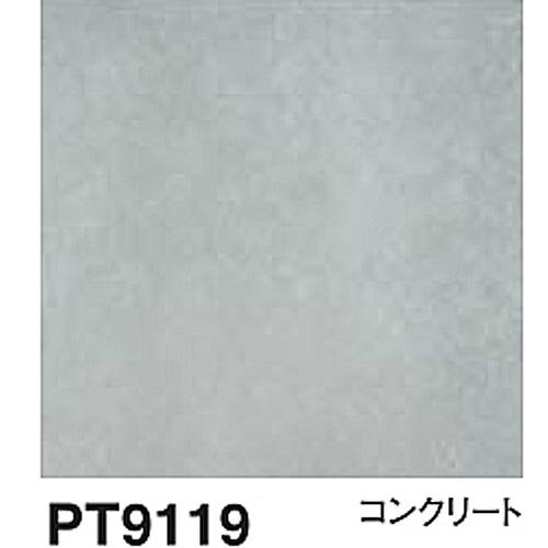 PT9119