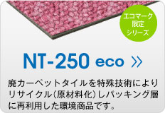 NT250