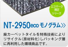 NT2950