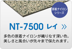 NT7500