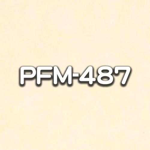PFM-487