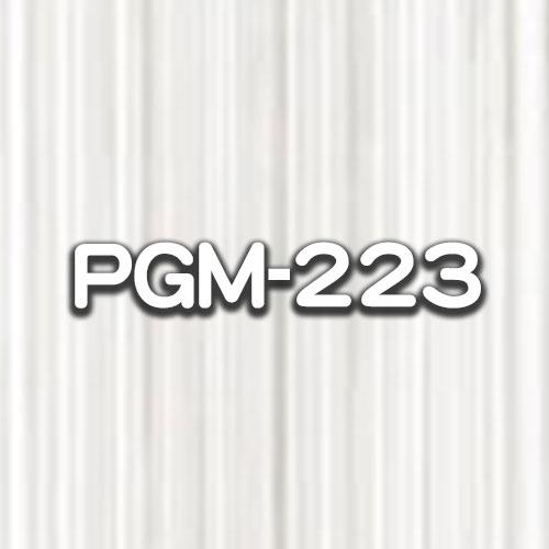 PGM-223