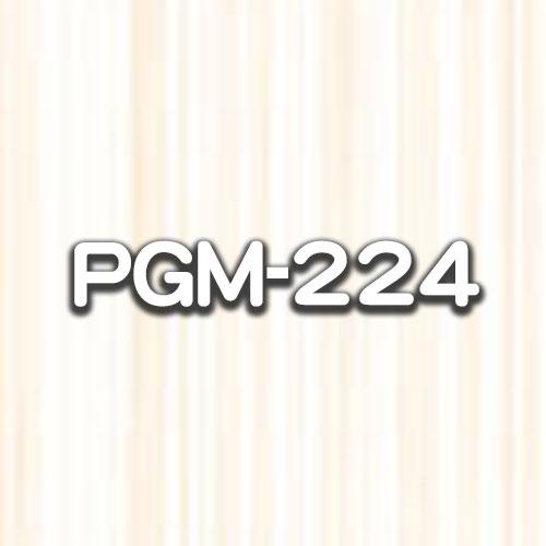 PGM-224