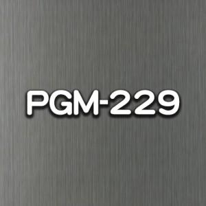 PGM-229