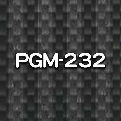 PGM-232