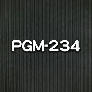 PGM-234