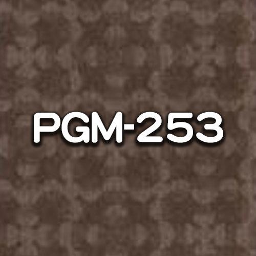 PGM-253