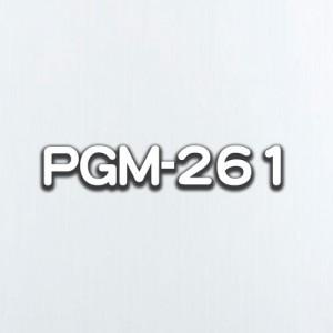 PGM-261