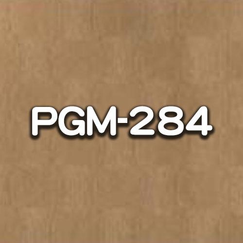 PGM-284