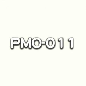 PMO-011