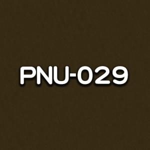 PNU-029