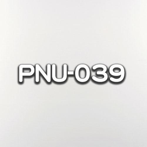 PNU-039