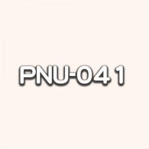 PNU-041