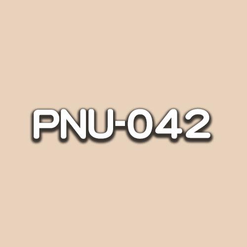 PNU-042