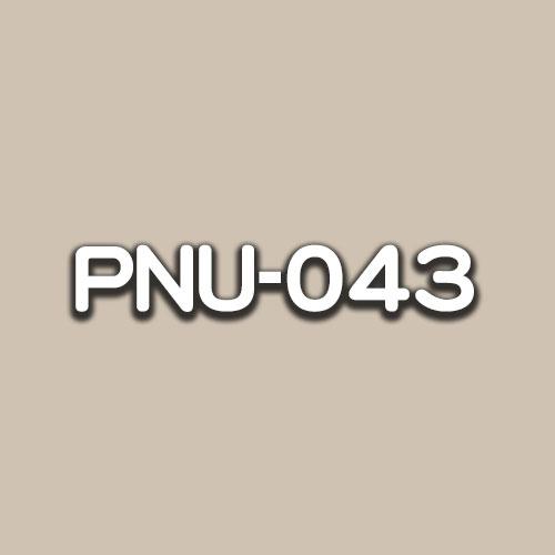 PNU-043