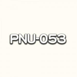 PNU-053