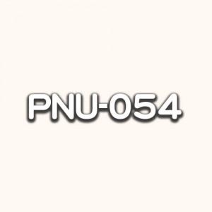 PNU-054