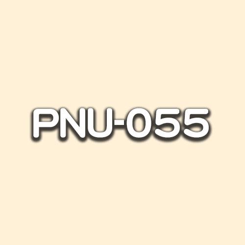 PNU-055