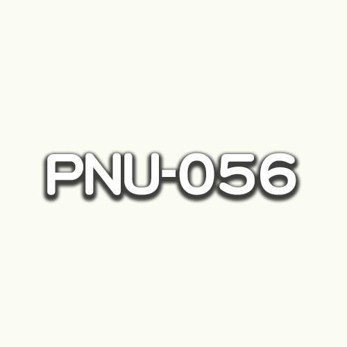 PNU-056