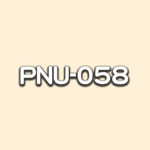 PNU-058