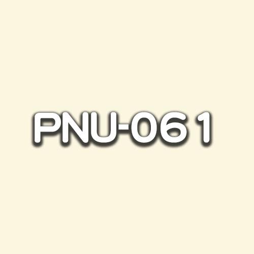 PNU-061