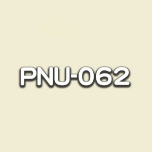 PNU-062