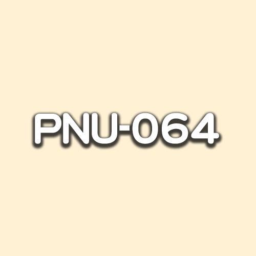 PNU-064