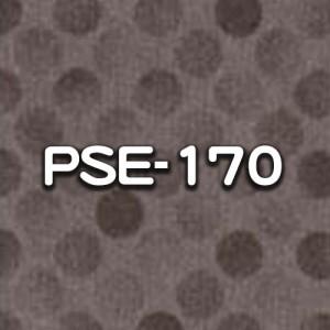 PSE-170