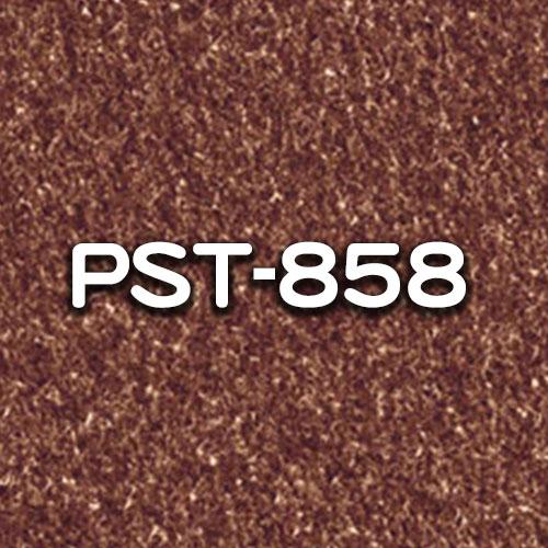 PST-858