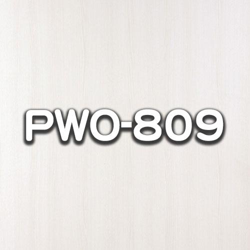 PWO-809
