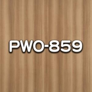 PWO-859