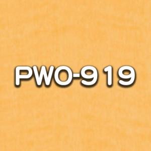 PWO-919
