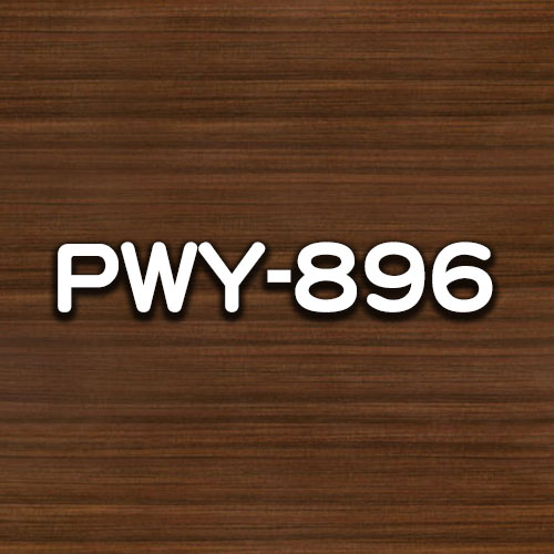 PWY-896