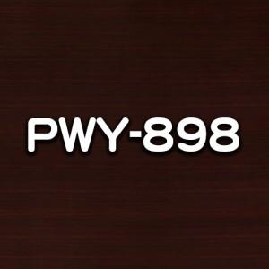 PWY-898