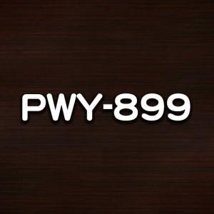 PWY-899